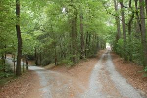 different_path